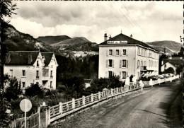15 - VIC-SUR-CERE - Hotel - France