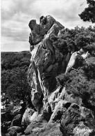 77 - LARCHANT : Le Rocher De La DAME JOUANNE - Petit Lot De 2 CPSM ( 1 Noir Blanc Et 1 Couleur ) - Seine & Marne - Larchant