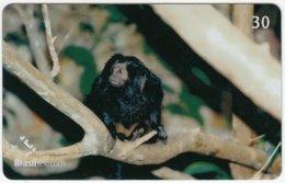 BRASIL D-550 Magnetic BrasilTelecom - Animal, Monkey - Used - Brésil