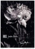 1  Carnet  Publicitaire 6 Pages  JARDIN D´ETOILES  Thierry MUGLER   2005 - Catalogues