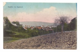 8601 RATTELSDORF - MEDLITZ, Panorama, 191..Eckmangel - Bamberg