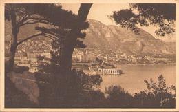 MONTE CARLO VUE GENERALE PRISE DE MONACO - Monte-Carlo