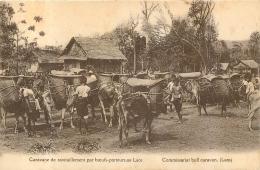 LAOS CARAVANE DE RAVITAILLEMENT PAR BOEUFS PORTEURS - Laos