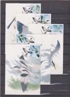 MAX Buzin-Meersman Vogels En Bloemen 10 Kaarten Volledig-Oiseaux Et Fleurs 10 Cartes Complete 2016 - Maximum Cards