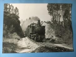 5632 - Espagne E97 En Tête D'un Mixte Entre Sta Comba Dao Et Treixedo (format 10 X 15) Photo Rochaix Editions BVA - Trains