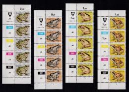 VENDA, 1982, MNH Controls Strips Of 5, Frogs, M 66-69 - Venda