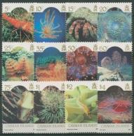 Cayman Islands 1986 Meerestiere 572/83 I Mit Jahreszahl 1986 Postfrisch - Kaimaninseln