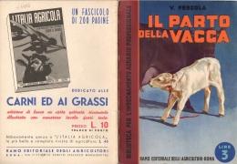 """06099 """"V. PERGOLA - IL PARTO DELLA VACCA - RAMO EDIT. DEGLI AGRICOLT. - ROMA - 1938 XVI"""" ORIGINALE - Libri, Riviste, Fumetti"""