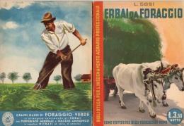 """06102 """" LUCIANO GOSI - ERBAI DA FORAGGIO - RAMO EDIT. DEGLI AGRICOLT. - ROMA - 1941 XIX"""" ORIGINALE - Altri"""