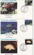 3 FDC Polynésie  Poissons 1981 - FDC