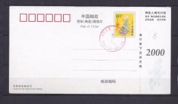 Carte Postale - 1949 - ... République Populaire