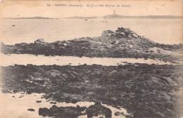 29 SANTEC ROC'H AR HAT / ROCHER DU LIEVRE / 87 - Autres Communes