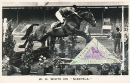 D24999 CARTE MAXIMUM CARD 1955 LUNDY - EQUISTRIAN HORSE JUMPING CP ORIGINAL - Horses