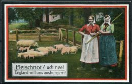 Germany Fleischnot England Pigs Comic Propaganda Postcard - Patriotic