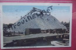 Cp Hampton 200 000 Bushels Oysters Shells - Hampton