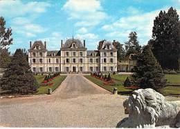 78 - LA VOISINE : Le Chateau ( Centre De  Vacances RICARD ) - CPSM CPM GF - Yvelines - France