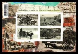 Saint Pierre Et Miquelon 2014 SPM ** Bloc Attelages De Chiens Dogs Cani Perros Hunde - Blocks & Kleinbögen