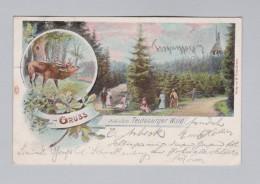 MotivLitho AK 1901-05-27 Horn Gruss Aus Teutoburger Wald Litho W. Fülle - Souvenir De...