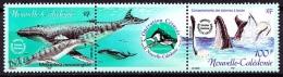 New Caledonia - Nouvelle Calédonie  2001 Yvert 844-45 Fauna, Whales - MNH - Nouvelle-Calédonie
