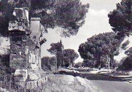 ROMA - Via Appia Antica - Roma (Rome)