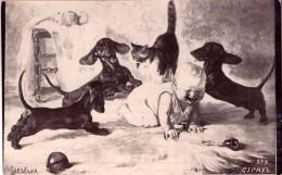 Dachshund Dog ,Adalbert Roeseler,Russia Empire Edition,vintage Postcard - Cani