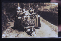 LAITIERES BELGES EN PHOTO CARTE RARE 1914 - Non Classés