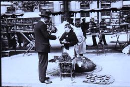 PARIS 1900 DU MOURRON POUR LES OISEAUX - Petits Métiers à Paris