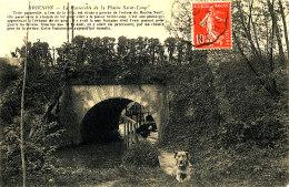 AB 792 /     C P A - BRIENON     (89) LA PASSERELLE DE LA PLAINE SAINT LOUP - Brienon Sur Armancon