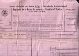 BRUXELLES PARIS Lettre De Voiture Pour 1 Chien Vivant 1900 Document Grand Format Chemin De Fer Train - Titres De Transport