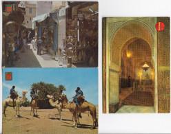 3 POSTCARDS:  MAROC : 2x Marruecos Tipico & 1x Mosquée Moulay Ismaïl, Meknés - (See 2 Scans / Voir 2 Scans) - Zonder Classificatie