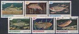 MDN-BK1-445 MINT POSTFRIS ¤ MOCAMBIQUE 1984 6w In Serie ¤ SEA ANIMALS - FISH - SEA LIFE - SEA MAMMALS - Marine Life