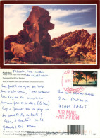 Poodle Rock, Valley Of Fire State Park, Nevada, United States US Postcard Posted 2007 Stamp - Etats-Unis