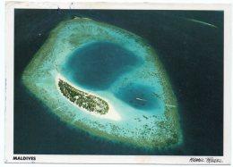 MALDIVES-NACATCHA (MICHAEL FRIEDEL No.23/63) / THEMATIC STAMP-FISH - Maldive
