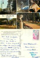Le Thabor, Rennes, Ille-et-Vilaine , France Postcard Posted 1978 Stamp - Rennes