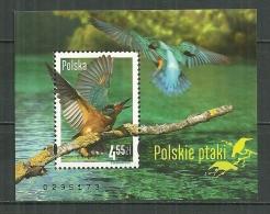 POLAND MNH ** Bloc 204 Oiseau Faune Martin Pêcheur Bird - Blocks & Kleinbögen