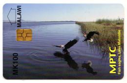 MALAWI REF MV CARDS MLW-02 MK100 FISH EAGLES NEUF - Malawi