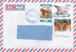Z3] Enveloppe Cover Burundi Chauve-souris Bat Champignon Mushroom Fleur  Flower - Fledermäuse