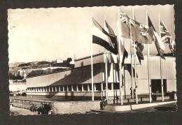 ARROMANCHES LES BAINS -Musée Du Débarquement En Normandie Et Drapeaux Des Alliés - War 1939-45