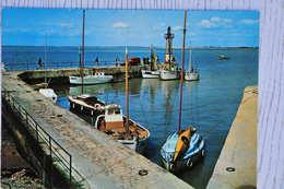 CPM FOURAS (17. Charente-Martime) - Le Port Nord - Fouras-les-Bains
