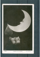 Chats - Lune - Moon - BE - Chats