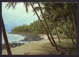 973- Guyane, îles Du Salut, Plage De L'île St-Joseph - Guyane