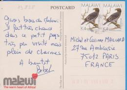 MALAWI POSTCARD STAMPS BIRD EAGLE - Malawi