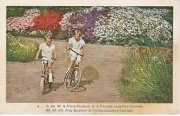 (D1023) Carte Postal Famille Royale N°9  Grosses Taches!!!! - Entiers Postaux