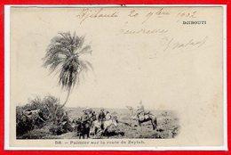 AFRIQUE --  SOMALIE - DJIBOUTI --  Palmier Sur La Route De Zeylah - Somalia