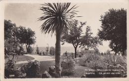Bulgarie - Bulgaria - Varna Staline - Jardin De Mer - 1956 - Bulgarie