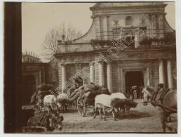 Bayonne. Attelages De Boeufs. 1903. - Lieux