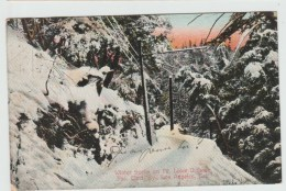 WINTER SCENE ON Mt. LOWE DIVISION, PAC. ELECT. RY - LOS ANGELES - Los Angeles