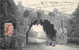 Bruxelles - Laeken - Attelage De Chien à Laeken Sous Le Pont Rustique - Laeken