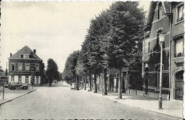 Beerse    Lindenlaan - Beerse