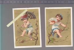 Chromo - Lot De 2 - Belle Jardiniere Paris - Lith Appel - Trade Cards